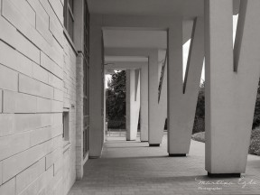 Architectural photograph of angled support pillars.