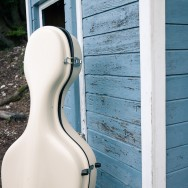 Cello case in a forest, against a blue backdrop.