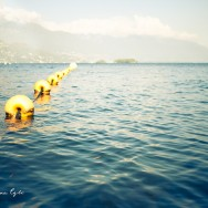 A string of yellow buoys floating in a lake.