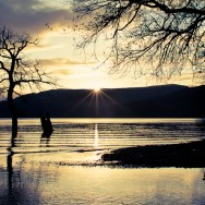 A sunset on Loch Lomond and silhouettes of trees.