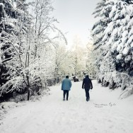 Two walkers in a Wintery Forest.
