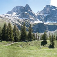A Panorama of a Swiss Mountain Range.