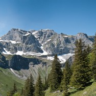 alps1_pano_b_d_800