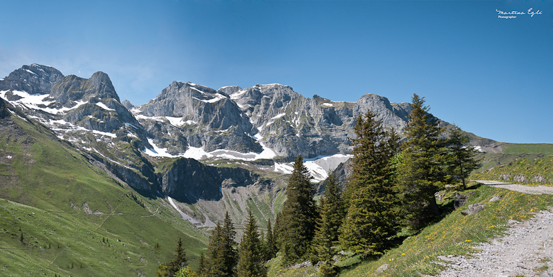 Alpine Summer Panorama