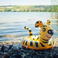a rubber inflatable lands on the shores of a lake in Switzerland.
