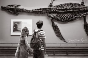 A lovely couple holding hands is looking at a plesiosaur skeleton at the National History Museum.