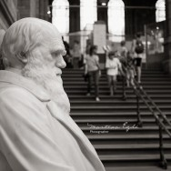 A Statue of Charles Darwin, with people in the Background