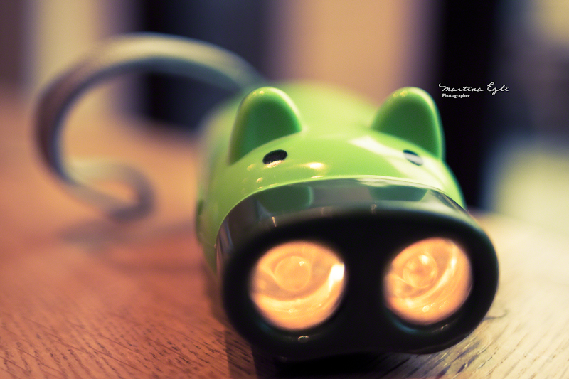 Little green pig...torch thing.