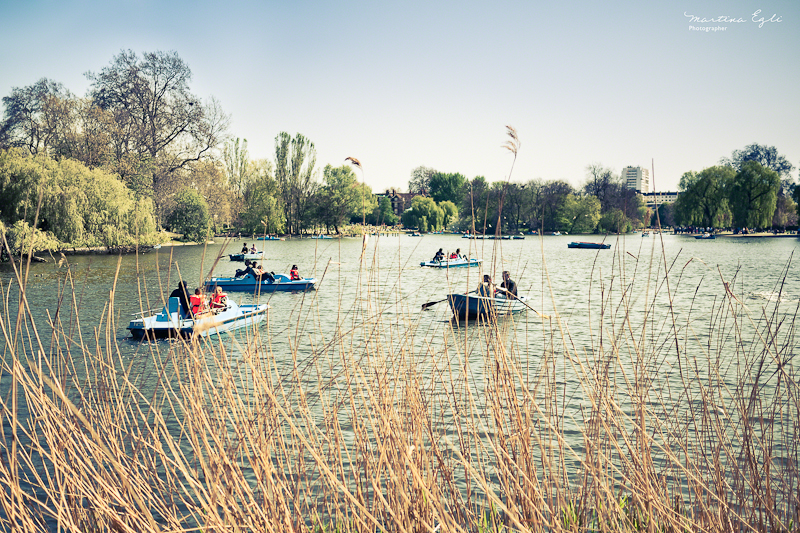 Boats on a lake at Regents Park, London.