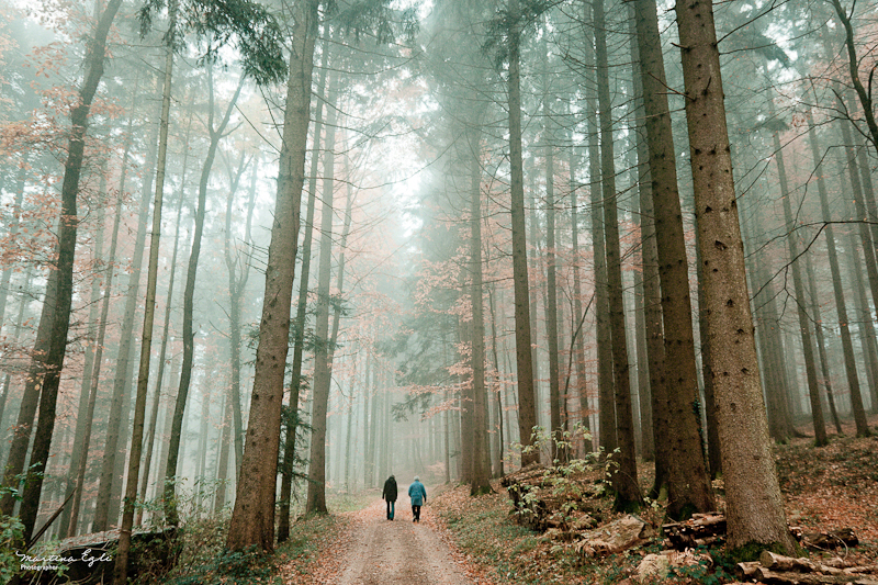 Two walkers in a misty autumn forest.