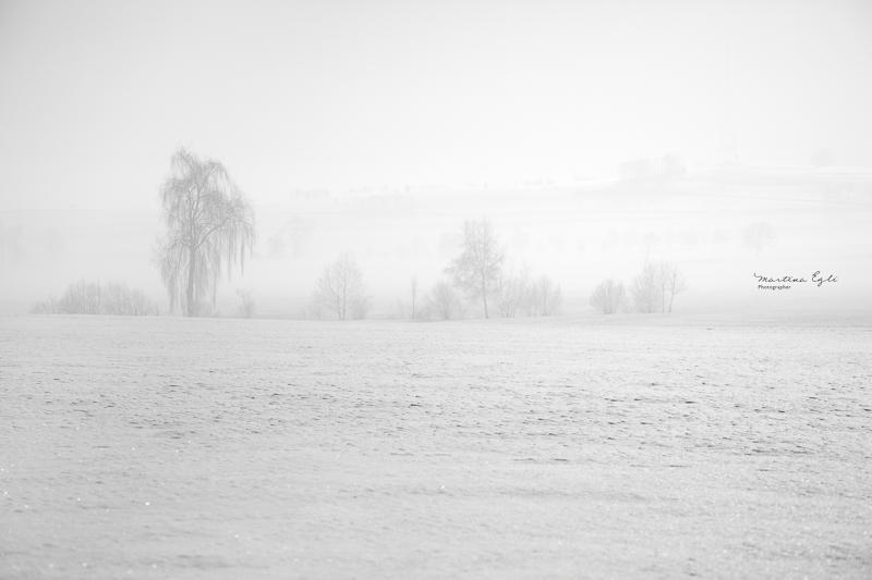 Winter Ghosts